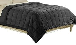 Luxlen Microfiber Blanket, Reversible: Soft Plush to Satin Cool, Staintech Treated, Full/Queen,  ...