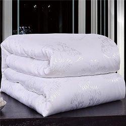 NS Luxury 100% Mulberry Silk Comforter Silk Filled Comforter Silk Duvet Silk Quilt Doona Bedspre ...
