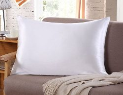 Silk Pillow Case for Hair & Facial Skin to prevent wrinkles Hidden Zipper Standard/Queen Si ...
