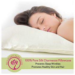 Pure Silk Pillowcase, 100% Mulberry Silk, OEKO-TEX Certified, Envelope Style Closure Hides Pillo ...