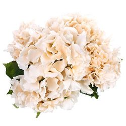 Soledi Artificial Silk Fake 5 Heads Beautiful Flower Bunch Bouquet Home  Decor Hydrangea (Champagne)