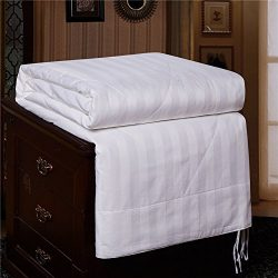 [COOL] Ibestuff 100% Natural Mulberry Long Silk Air Condition Summer Comforter Soft Blanket King ...