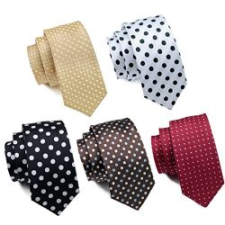 Hi-Tie 5PCS Stylish Polka Dot Tie for Men Silk