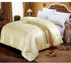 NS Luxury 100% Mulberry Silk Filled Comforter Silk Duvet Silk Quilt Doona (87x95inches)Bedspread ...