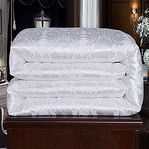 Hxiang Pure Mulberry Silk Comforter Silk Duvet Silk Quilt