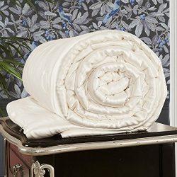 LILYSILK All Season Silk Comforter with Silk Shell 100% Silk Duvet Queen 87×90 Inches