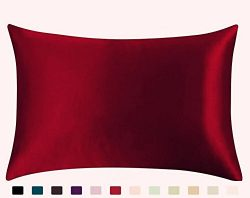 JUWENIN,Luxury Satin Pillowcase with Zipper (Silky Satin Pillow Case for Hair) set of 2 (Standar ...