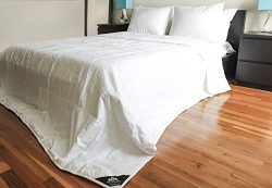 TRIUMPH HILL Silk Medium Weight Bed Comforter, King, White