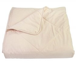 Empress Home Washable Silk Filled Comforter – Twin – Beige