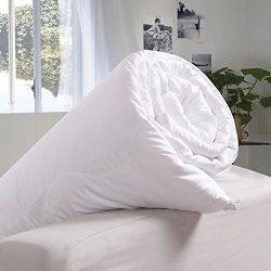 OOSILK 100% Mulberry Silk Comforter, Silk Filled Comforter Silk Quilt Silk Duvet,Summer,Cal King