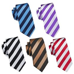 Hi-Tie 5PCS Classic Stripe Necktie Set for Men Silk