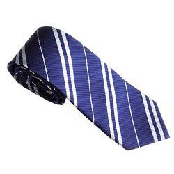 Gotd Men Neckties Ties Silk Business Suit (Blue)