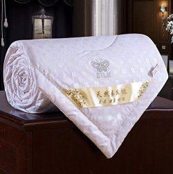 Zehui Duvet Coverlet Blanket Doona for Summer 100% Mulberry Silk Filled Comforter Quilt White 20 ...