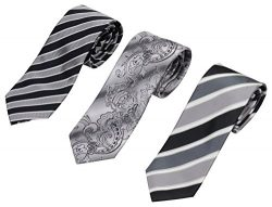 Set of 3 Elegant Neck Ties By Mens Collections (Black and Grey)