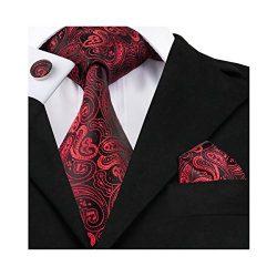 Hi-Tie Paisley Red Silk Tie Classic