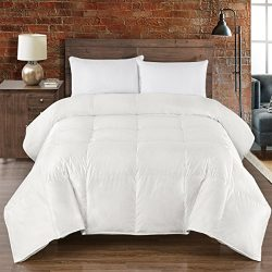 Abripedic SILK GOOSE-DOWN COMFORTER, Luxury Down Duvet Insert, 450 TC Cotton-Silk Shell- 650FP,  ...