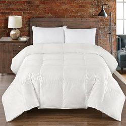 Abripedic Cotton Silk GOOSE-DOWN Comforter, 450-Thread-Count, Goose Down Comforter, 45% Silk &am ...