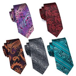 Hi-Tie 5PCS Retro Paisley Neckties for Men Woven Silk