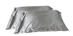 2pc New Queen/Standard Silk~y Satin Pillow Case Multiple Colors (Silver)