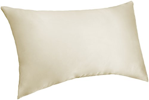 Pinzon Mulberry Silk Pillowcase – Queen,  Ivory