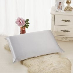 ALASKA BEAR Luxurious 25 momme Silk Pillowcase, 100% Mulberry Silk Pillow Cover, Queen (1, Silve ...
