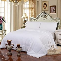 HollyHOME 100% Natural Long Strand Mulberry Silk Comforter with Cotton Covered for All Seasons,  ...