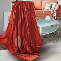 THXSILK 100% Silk Blanket Comforter Throw for Sofa Reading Travel Baby Toddler Child – Rub ...
