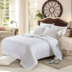 JL Home Collection Silk Quilt 100% Silk Filled Machine Washable Duvets Comforter Cotton Cover, W ...