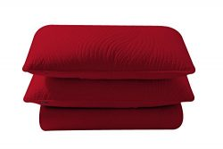 Brielle Stream Quilt and Sham Set, Full/Queen, Red