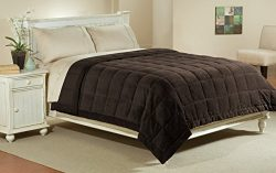 Luxlen Full / Queen Microfiber Blanket in Chocolate | Reversible: Soft Plush to Satin Cool | Sta ...
