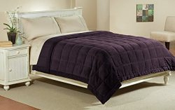 Luxlen Full / Queen Microfiber Blanket in Purple | Reversible: Soft Plush to Satin Cool | Staint ...