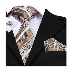 Hi-Tie Floral Jacquard Woven Silk Tie Necktie Set for Men