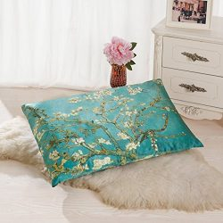 ALASKA BEAR – Natural Silk Pillowcase, Hypoallergenic, 19 momme, 600 thread count 100% Mul ...