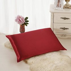 ALASKA BEAR Luxurious 25 momme Silk Pillowcase, 100% Mulberry Silk Pillow Cover, King (1, Burgun ...