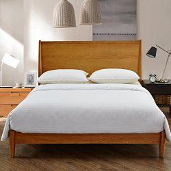 MOON'S SLEEPWARES Full Size 100% Pure Long Grade Mulberry Silk Comforter Silk Filled Comfo ...