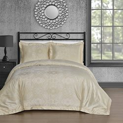 Comfy Bedding Silk Feel Cotton Blend 450 TC 3-piece Duvet Cover Set (Queen, Beige)