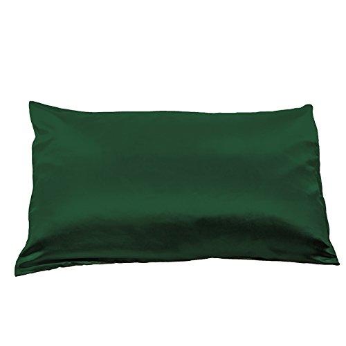 Fishers Finery 19mm 100 Pure Mulberry Silk Pillowcase
