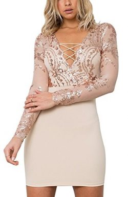 Womens Sexy See Though Mesh Patchwork Floral Embroidery Backless Bodycon Clubbing Party Dresses