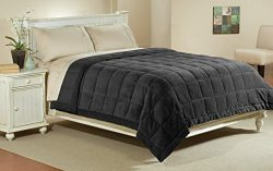 Aeolus Down Luxlen Extra Long Twin XL Microfiber Blanket in Black, Reversible: Soft Plush to Sat ...