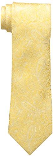 Countess Mara Men's Augustin Paisley 100% Silk Tie , Yellow, One Size