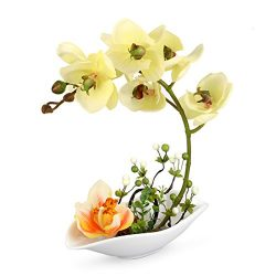 Louis Garden Artificial Silk Flowers 7 Head Simulation Phalaenopsis Bonsai (Simulation of Water) ...