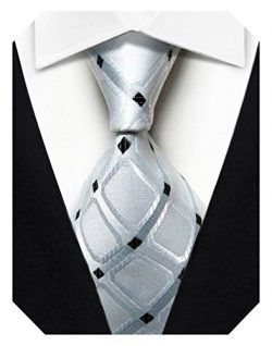 Wehug Men's Classic Tie Silk Woven Necktie Jacquard Neck Ties For Men White LD0044