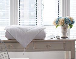 Sincesilk Mulberry Silk Comforter, 100% Natural Long Strand Pure Silk Filled Quilt/Duvet, 100% C ...