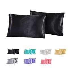 WarmGo 100% Luxury Silk Satin Pillowcase 2pc/Set,Good for Skin and Hair Standard / Queen Size (B ...
