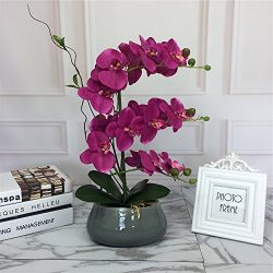 Large Lifelike Silk Orchid with Decorative Ceramic Vase,Vivid Artificial Flower Arrangement,Pott ...