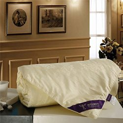 RoseSilk Mulberry Silk Comforter Filled by 100-Percent Natural Long Strand Mulberry Silk Floss,E ...