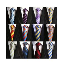 Weishang Lot 12 PCS Classic Men's 100% Silk Tie Necktie Woven JACQUARD Neck Ties (Style 1)