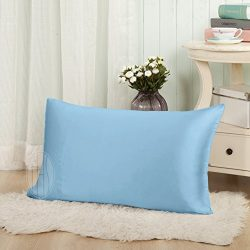 THXSILK Silk Pillowcase for Hair and Skin-Silk Pillow Cover,Pillow Case-Hypoallergenic with Enve ...