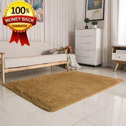 SANMU Super Soft Velvet Silk Rugs,Simple Style Modern Shaggy Carpet Fashion Color Bedroom Mat fo ...