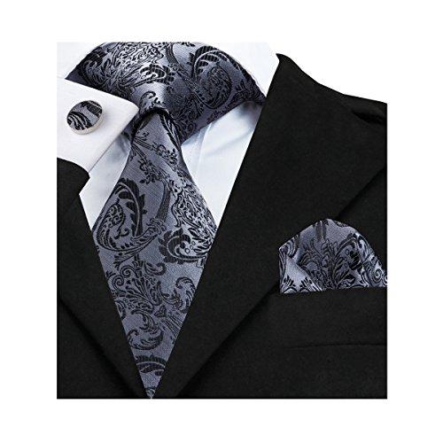 Hi-Tie Mens Silk Paisley Tie, Woven Silk Necktie ...